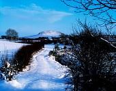 Slemish Mountain, Co Antrim, Ireland