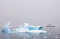 Expeditions ship, National Geographic Endeavour, Antarctica