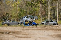 Wrecked cars parked at junkyard