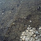Dry cracked mud and water