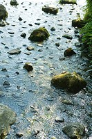 Rocks scattered in stream