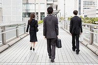 Rear view of businesspeople walking