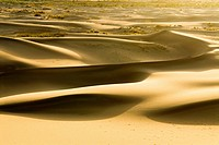 China, Xinjiang, Taklamakan desert