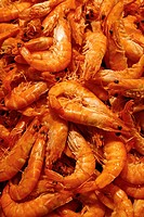 Prawns for sale at La Boqueria market, Barcelona. Catalonia, Spain