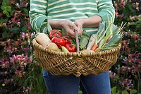 Woman holding fruit and vegetable basket mid section close_up