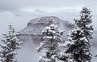 USA Arizona Grand Canyon North Rim in snow