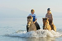 Two riders on back of an Icelandic horse and a Norwegian horse in the lake Chiemsee in southern Bavaria Germany, in the background the alps are visibl...