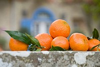 Satsumas on a wall