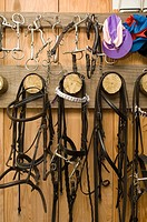 Bridles on hooks