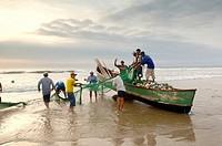 Ecuador - Guayas Province. Fishermen cast nets near Montanitas
