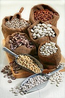 Still life: Dried beans. Top to bottom and left to right: black-eyed beans, borlotti beans, lima beans, butter beans, Tuscan Pratomagno zolfini, haric...