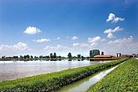 rice paddy, monferrato, piemonte, italy