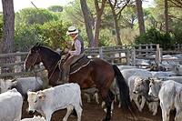 europe, italy, tuscany, alberese, cowboys