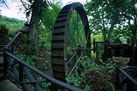 Tobago Trinidad Arnos Vale Waterwheel