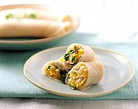 Japanese food _ spring roll