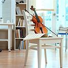Book shelf and violin