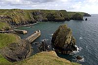 Mullion Cove, Lizard Peninsula, Cornwall, UK