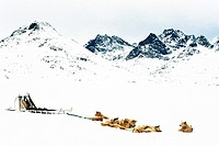 Dog sledge, Greenland,