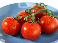 Plate of vine Tomatoes with dew
