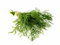 Raw Food, Herbs, Dill
