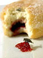 Doughnut with Jam and Fly