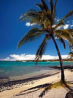 Beach view, Waikoloa, Hawaii