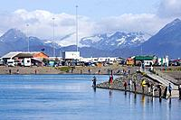 People fishing for silver salmon at the Fishing Hole on the Homer Spit Homer Alaska Kenai Peninsula summer