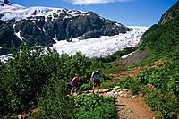 People Hiking Trail Along Exit Glacier KP AK Summer Harding Ice Field Kenai Fjords NP