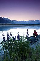 Hiker along 20_mile River @ sunrise stops near Lupine to view scenery Chugach National Forest AK Summer