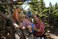 Father & boys playing in trees on hike in Glen Alps area, Chugach State Park, Chugach Mtns, SC Alaska.