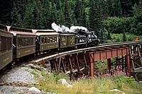 White Pass & Yukon Route Railroad on Tressel SE AK Summer near Skagway