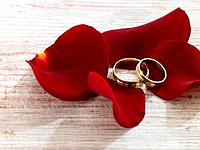 Wedding rings with rose petals