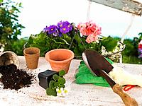 Close_up of flower pots with gardening equipments