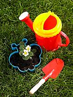 Potted plant with a watering can and a trowel