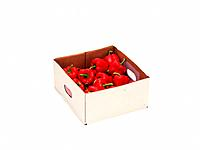 Red paprika in box, high angle view