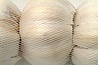 Close Up Of Garlic Bulbs Packaged In A Net