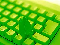 Keyboard and a Leaf, Close Up, Toned Image