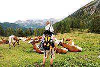 Austria, Salzburger Land, father and son looking at cattle herd