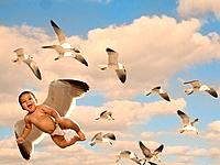 Baby boy 6_11 months flying with seagulls Digital Composite