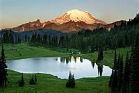 Mount Rainier and Tipsoo Lake from chinook Pass.