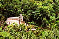 Caribbean - Martinique - Fonds - Saint - Denis (thumbnail)