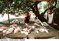 Seychelles _ Mahe Island _ Market