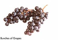 Bunches of Grapes