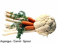 Aspargus _ Carrot _ Sprout
