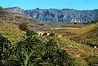 Spain _ Canary Islands _ Great Canary _ Artenara