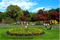 Ireland _ Dublin _ St Stephen's Green
