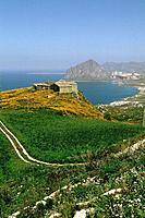 Italy _ Sicily _ Erice Road