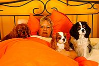 Woman and Cavalier King Charles Spaniel in bed
