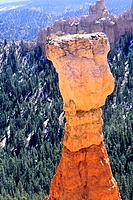 USA _ National Park _ Bryce canyon _ Hiver