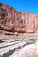 Tunisia _ The South _ Chott el Jerid Region _ Montain Oasis _ De Selja gorges _ The Red Lizard